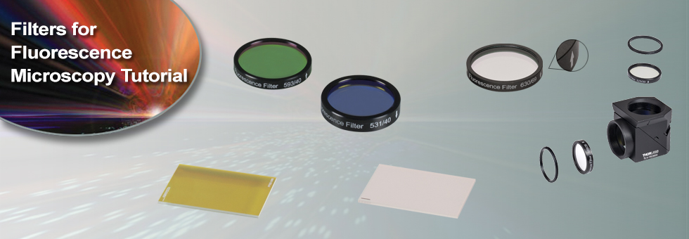 Filters for Fluorescence Microscopy Tutorial