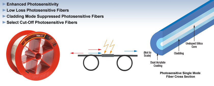 Photosensitive Single Mode Fiber