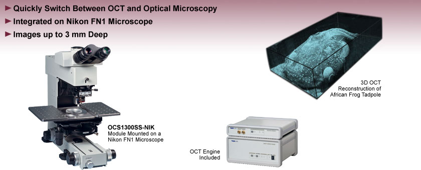 OCT Microscope Module