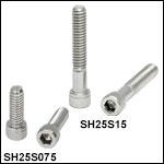 1/4in-20 Stainless Steel Cap Screws