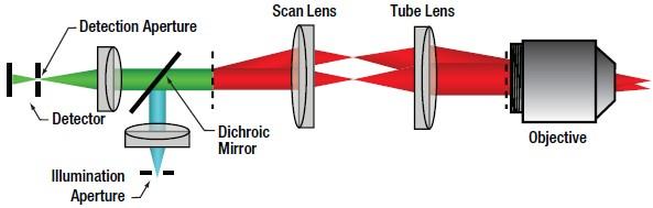 Confocal Optical Path