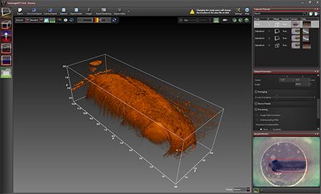 OCT 3D Imaging Screen Shot
