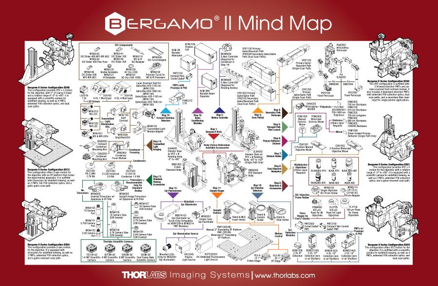 Bergamo II Mind Map